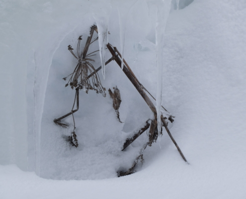 Winter eindruck